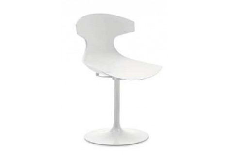 Chaise ECHO pied laqué blanc
