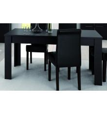 Table rectangulaire EBENE 170x90 cm